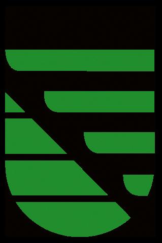 Sachsen Logo